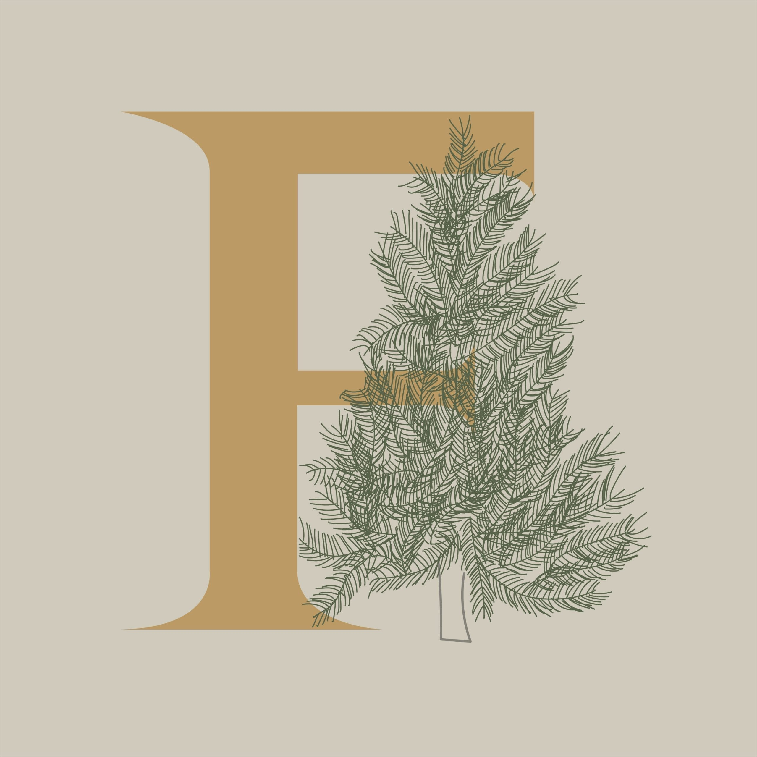 the letter F with a fraser fir