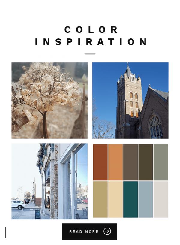 Color-Inspiration-for-illustration-palette
