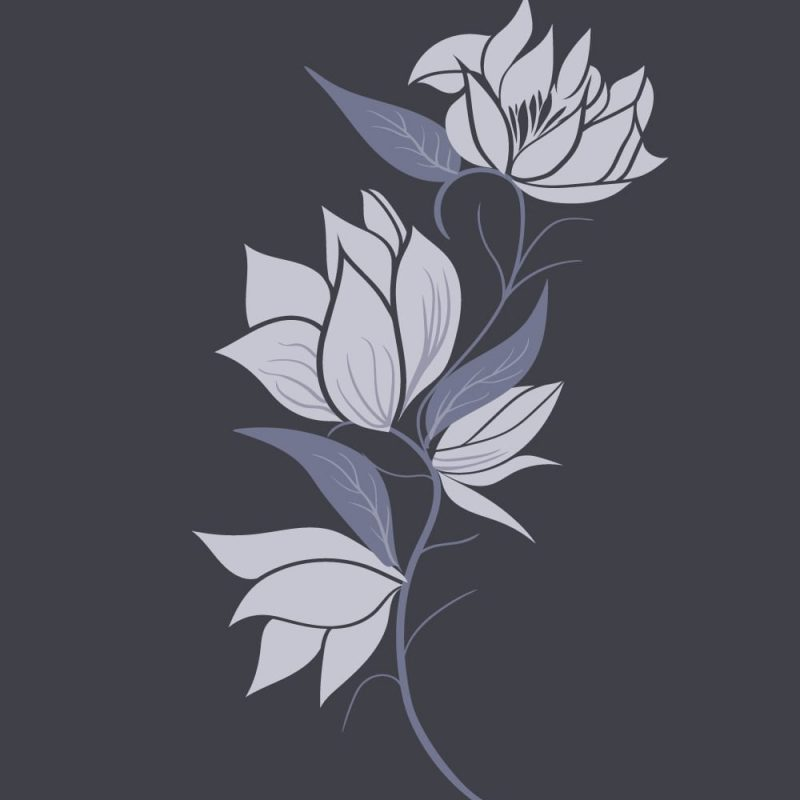 Magnoliafinal